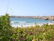 Citysurf Portugal